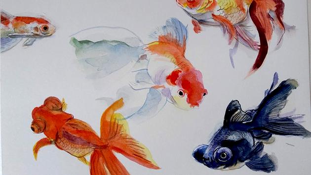 dibuix de peixos realitzat amb la tècnica gansai